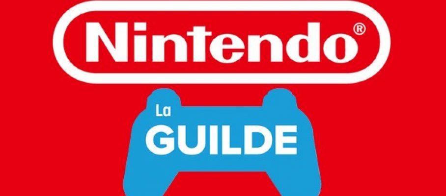NintendoGuildeFG